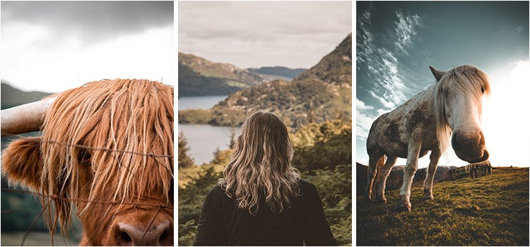 Collage of Lake District Images UK