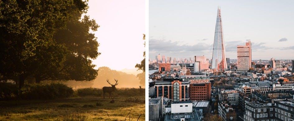 UK Holidays - London