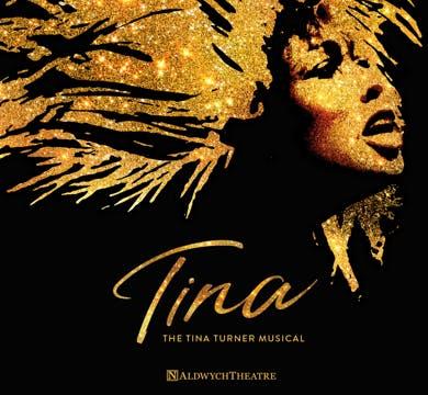 Tina Turner the Musical Banner