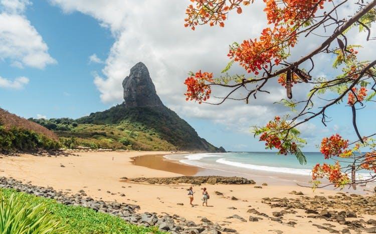 Brazil Winter Sun