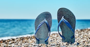 The Holiday Extras Flip-Flop Index