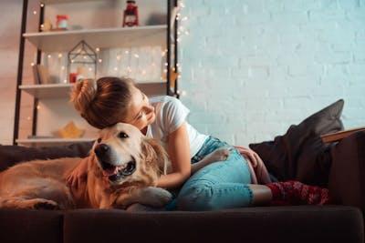 Ferienhaus Bodensee mit Hund